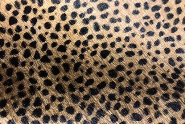 Baby cheetah beige