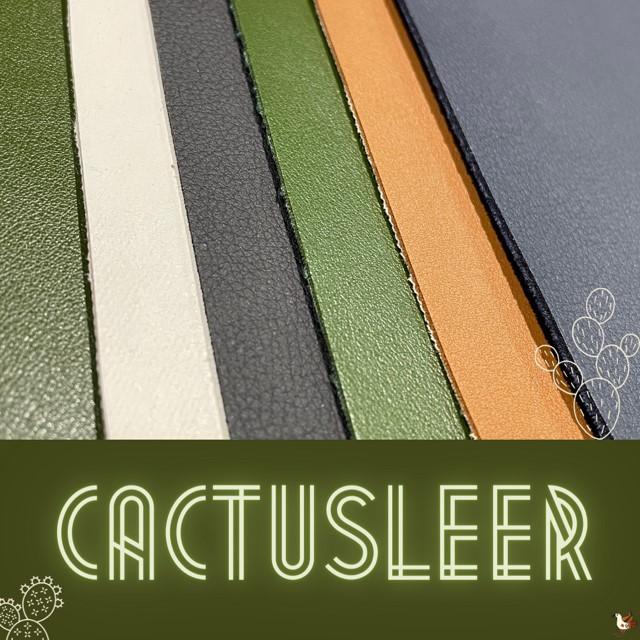 Cactusleer_Instapost